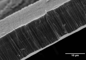 The end of delamination?