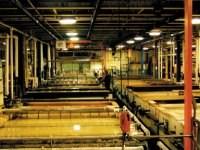 zinc and zinc alloy plating line
