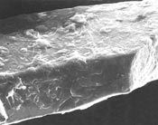 Microcoating processes