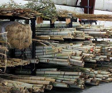 raw feedstock