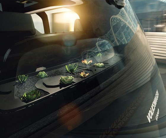 Yes, that is something of a terrarium on the inside of the vehicle. It is said to help purify the cabin air. (And as the driver won't have anything to do, perhaps a little Zen gardening would help winnow away the time.)