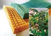 'Green' PUR Polyols