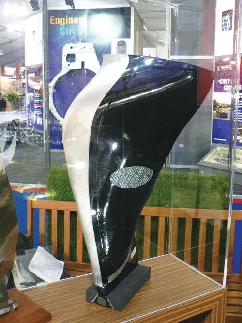 Composite Fan Blade