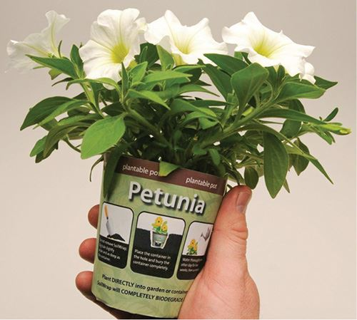 Ball Horticultural SoilWrap plantable pot made of Mirel PHA biopolymer
