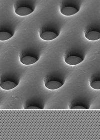 Scanning electron micrographs at 500X and 5000X magnification.