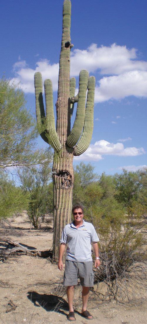 Koepfer, cactus
