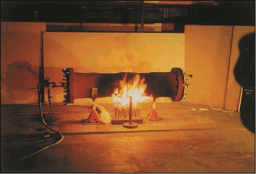 ED)-Imping.Flame Fire Test.jpg