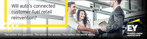 EY Global Sevices