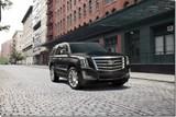 Cadillac Escalade Grille Designs