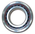 Hybrid bearing