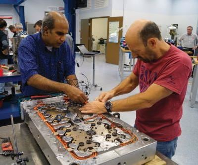 mold repair technicians