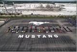 Ten Million Ponies: Mustang's Milestone