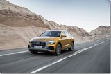 Diesels in German Audi Q8s