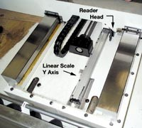 Y-axis linear scale