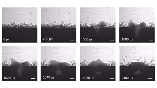 Dynamic X-ray images of laser powder-bed fusion processes