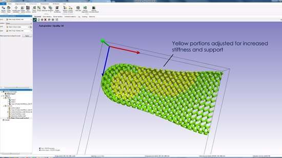 Screenshot of the latticed sole in Simpleware software