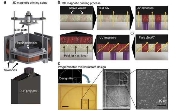 Magnetic 3D printing process with 3DFortify DCM