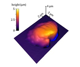 data from NIST atomic force microscopy (AFM) technique for 3D printing