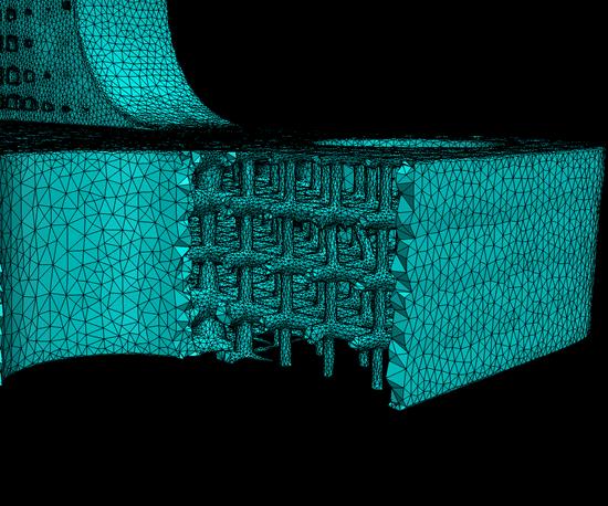 mesh generated in Simpleware