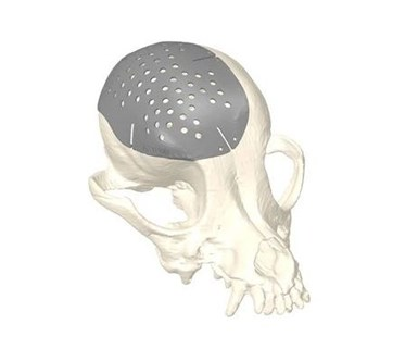 rendering of a dog skull with a 3D printed titanium plate