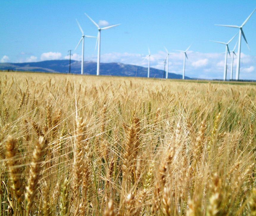 Wind farm in Montana.