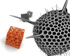 ELiSE process optimizes lightweight bionic designs using plankton as models
