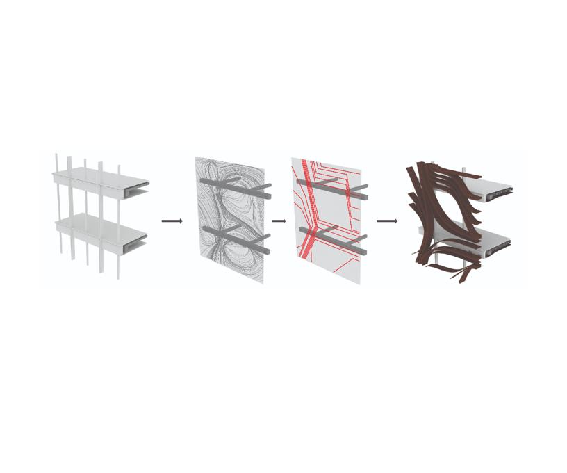 wood/carbon fiber composite