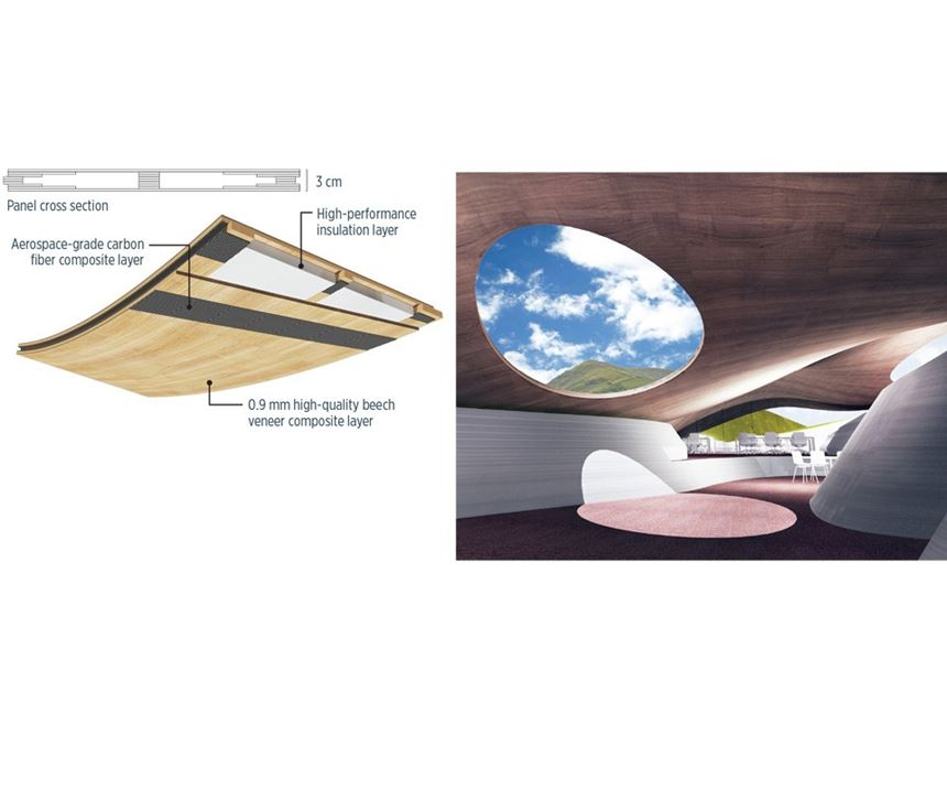 wood/carbon composite panel roof