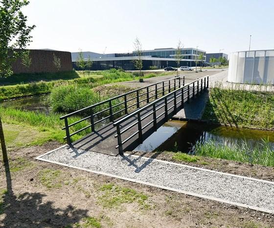 bio-based bridge