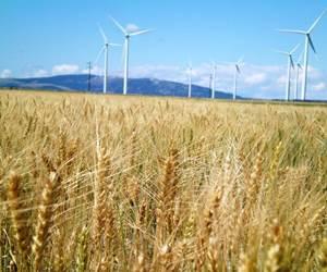 The markets: Renewable energy (2020)