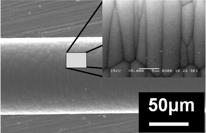 . Surface morphology of CVD boron fiber showing surface roughness