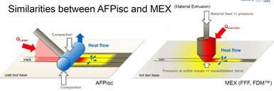 similarities between AFP ISC and MEX