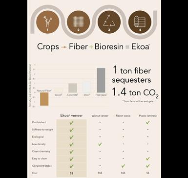Ekoa Surface infographic