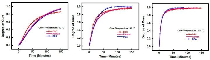 DSC,拉曼光谱和DEA进行治疗监测的比较