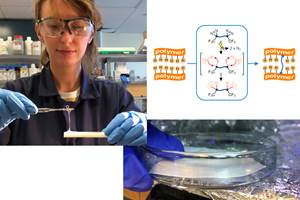 XlynX Materials推出新型聚合物分子胶:BondLynx