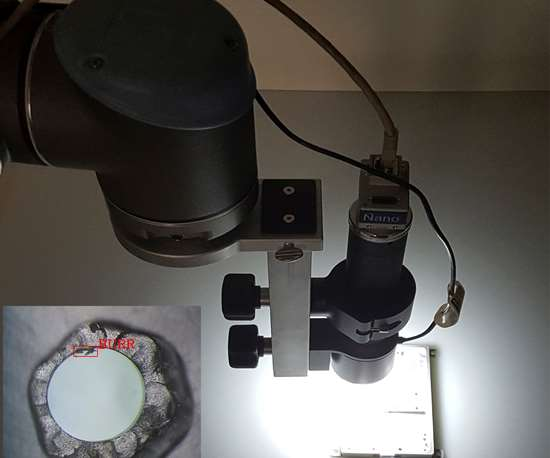 All Axis burr detection system