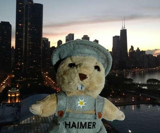 Haimer Marmot