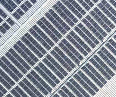Kiwapower, nueva compañía solar respaldada por Japón, apuesta por el mercado energético mexicano