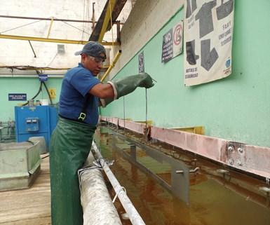 Empresas de acabados mexicanas toman medidas contra el coronavirus