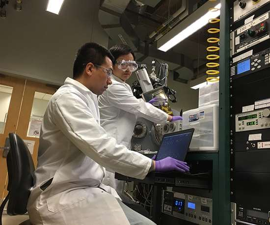 2 people working in a lab