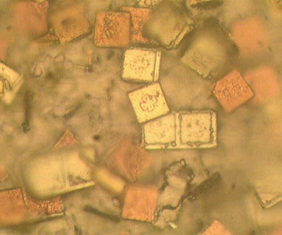 A 1,000x view of one example of structured micro taggants