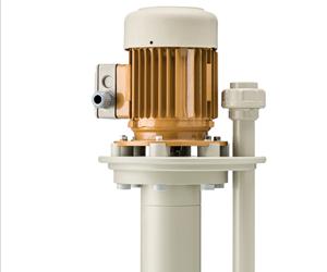 D13 vertical pump