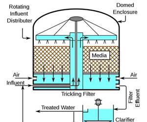 Biological Wastewater Treatment for Industrial Applications