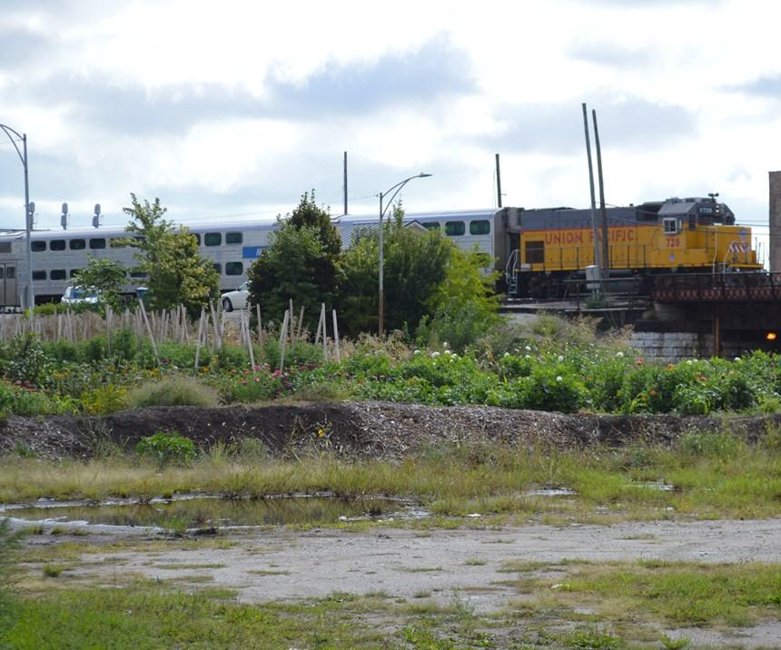 train going past a garden