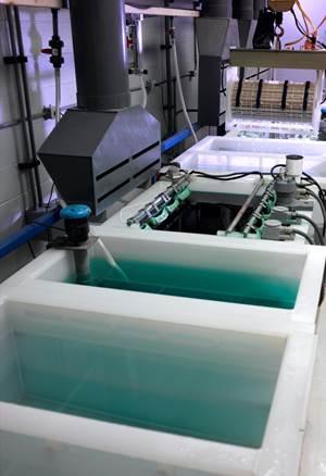 Arkema's Kynar Flex PVDF Resists Corrosion