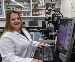 Women in STEM: A Spotlight