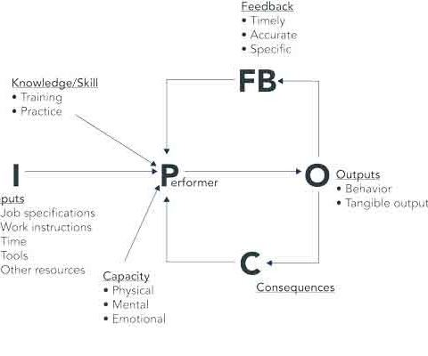 Human Performance System