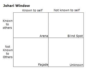 Blank Johari window grid