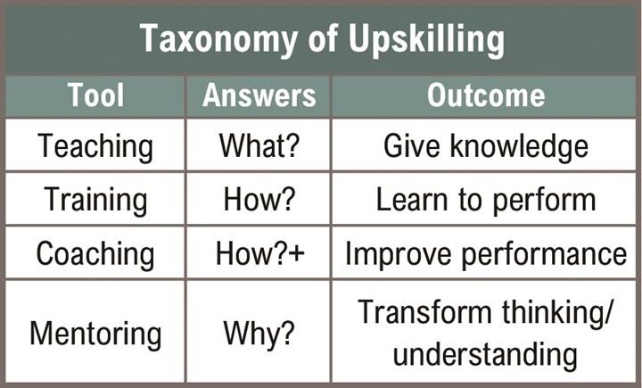 taxonomy of upskilling chart