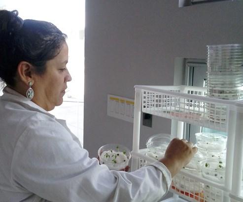 Tecnología de plasma